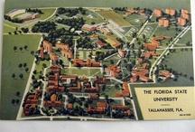 FSU - Around Campus