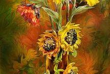 Obrazy / Obrazy, ktoré milujem, získavam z nich mnoho dobrej energie, s nimi je deň krajší.