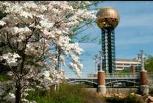 Knoxville Tennessee / by Lorraine Montgomery