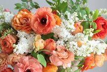 bouquets - buketi / by Ligija
