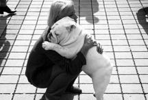 Abbracciami!!!!!!!! / Mi piacciono gli abbracci, la ricomposizione, la fine della mancanza di qualcuno  (Johnathan Safran Foer)