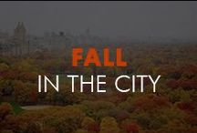 FALL IN THE CITY / It's all about the crisp NYC air.