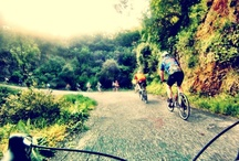 A Bike Lane for Everyone