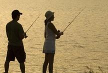 Bait Your Hook - Let's Fish