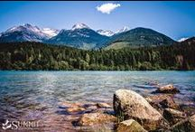 Whistler Landscape / by Summit Lodge Boutique Hotel