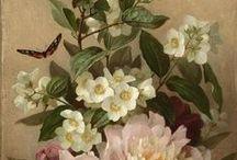 Lovely floral art / by Roberta Bronwyn