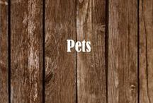 Pets / Ruff >< Meow  |  www.MREdepot.com