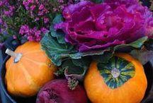 autumn / Ideas para decorar con motivos otoñales hojas, frutos...
