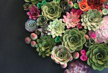 FLORES/ PLANTAS / Podeis encontrar ideas sobre ramos, centros de flores, plantas, terrariums...