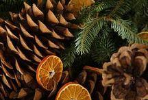 CHRISTMAS DESIGNS / Diferentes tipos de proyectos manuales para decoración navideña  / by Carolina Quesada
