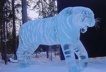 ICE WONDERS BEAUTIFUL / by Karen