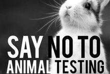 ME | WTF...Stop animal cruelty!!!