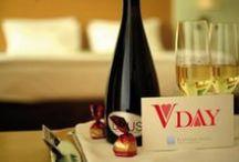 Saint Valentine's Day / Celebrate your Love Affair with Elefsina Hotel