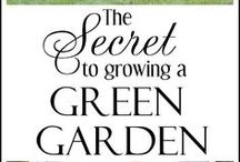 How Do I Get Green Grass / by TruGreen