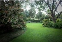 Lawn Aeration / by TruGreen
