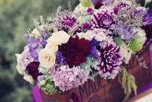 Gorgeous Florals / Flowers are simply divine!
