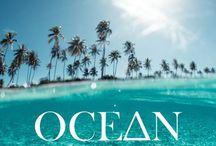Beach life / Coastal living, ocean, surf and summer