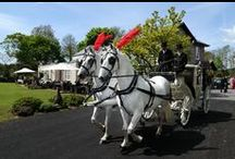 Wedding ideas: Cars, carriages and other ideas / Transport to your wedding venue is one of the most important things to organise. It says a lot about your personality by the grand entrance you make. From horse-drawn carriages to motorbikes, the list is endless!