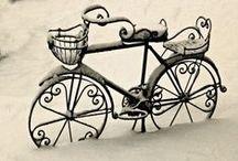 Bike ride@@