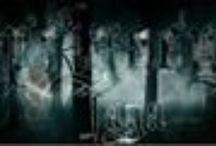 Doppelgaenger's Saga / La guerra è ormai finita, Harry è un auror e sta per avere il suo secondo bambino. Degli strani sogni e la misteriosa comparsa di un neonato particolare turbano la sua pace, tornando a scuotere la famiglia Potter sedici anni dopo, quando Tom, il bambino-che-è-stato-salvato, scoprirà che Hogwarts non solo nasconde misteri, ma anche il suo oscuro passato... La nuova generazione dovrà affrontare misteri, intrighi, nuove amicizie e infine, l'amore.