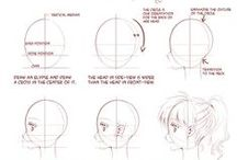 illustrations /study