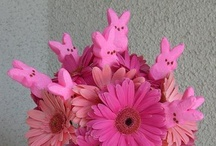 Easter Ideas / by Mrs. Pin Addict