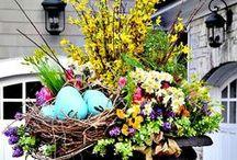 Spring Has Sprung DIY Ideas