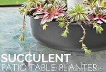 Garden Design, Decor, & Gifts / Discover garden, landscaping, and outdoor home decor ideas, gifts, and diy projects.  #gardendecor, #diygardeningtips #gardening #gifts