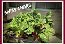 Fresh Gardening Recipes