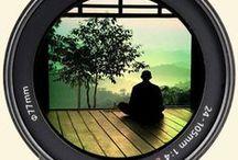 Paix et Bien être / Très intéressé par le développement personnel et la spiritualité, j'apporte une attention particulière à la contemplation du moment présent. En sérénité et bienveillance.