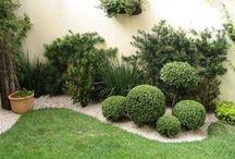 Jardim Pequeno - Small Garden