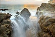 Monterey / Carmel / Big Sur Field Trip Ideas / Field Trips, group tours and educational events in Central California for schools, families, homeschoolers and scout troops.  The area includes Monterey, Carmel and Big Sur.