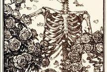 Skulls ε Roses