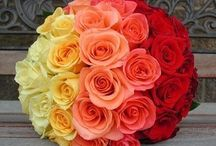 Flower Colour Inspiration / Inspiration flower colours to create colour themed weddings.