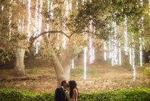 Tree Wedding Decorating Ideas / Many outdoor weddings are using trees as the ceremony site and decorating them has become a real art for modern weddings.