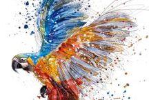 Oiseaux / by sylvette Peyrol