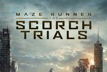The Scorch Trials / It's about Scorch Trials