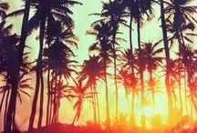 Summer Lovin / by Rose