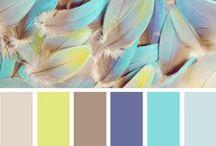 Color Theme - mixed / color / design