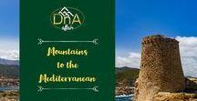 A DnA Affair / A DnA Affair marketing material