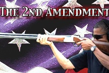 Friends of the 2nd Amendment / by Chad Russell