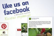 Ingredients | Healthy and Organic Recipes / Visit us in Facebook and do it! / by Finca Exotica Eco lodge