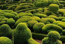 jardin.green