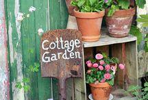 Gardening / Ideas for my garden