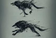Animal/Creature Animation