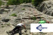 THE ROCK (CLIMBING IN FALESIA) / Team building: arrampicata in falesia