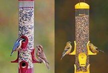 Bird Feeder Bird Home Cute Bird Loves Home / Wild Bird Feeder - top quality, birds love it