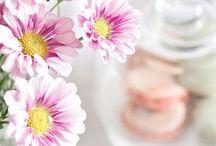 Florals / Flowers | Bouquets | Flower Arrangements