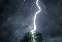 Natures Fury / by Robin Nisius