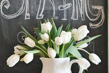 Kevään juhlaa - Spring Party